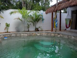 Tulum Casa with Cenote-style Pool