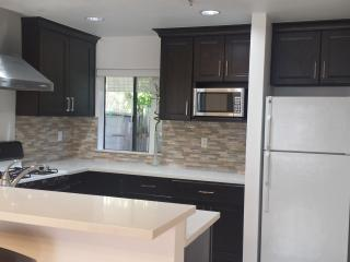 Stainless steel appliances: Diswasher, Stove, Fridge, Microwave.