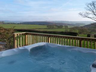 Hen Ysgubor Woodburner,Hot Tub ,Games Room - 49161, Lampeter