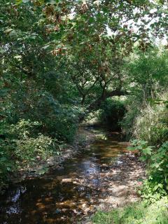 Stream running through the pretty gardens at Dingley Dell