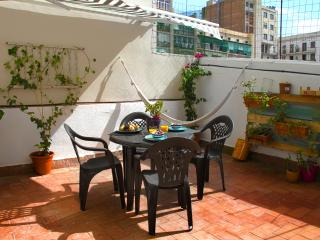 SUPERB CENTRIC APART WITH TERRACE, Barcelona