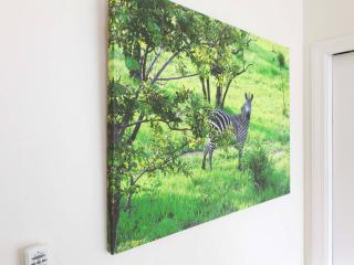 PHOTOGRAPHS TO CREATE A SAFARI FEEL IN THE BEDROOM.
