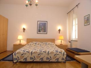 Spacious Apartment Anton TourAs in the city center, Liubliana
