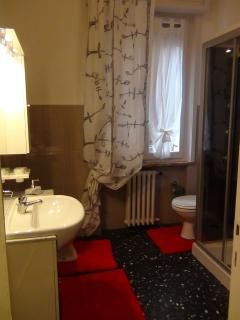 Bathroom with shower with radio and tub