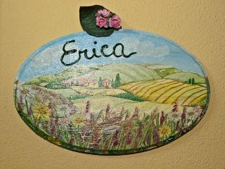 Agriturismo Il Brugnolo - erica, Scandiano