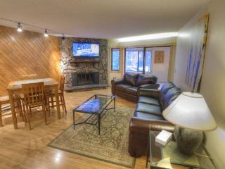 BE108 Bridge End 1BR 1BA Pet Friendly - Center Village, Copper Mountain