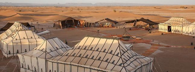 Sahara under stars