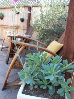 Enjoy and glass of wine in the wine barrel adirondak chairs under the olive tree