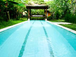 Private villa with private 12m pool,AC,WiFi, Ubud