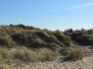 The Bolthole | Winterton-on-Sea