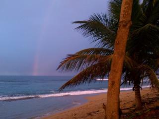 SJ Paradise Beachfront Villa, Rincon