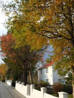 House in fall.
