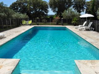 In Provence, large sunny private pool, lavender