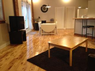 Large 2 bedrooms near Mont-Royal Metro Station, Montreal