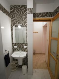 Main Bathroom Ensuite - Zebra Motif - Sink & Entrance