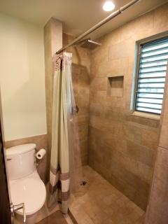 Spa style shower, master bath