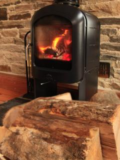 Cosy up with the Jotul log burning stove.