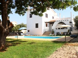 Andros 1 Holiday villa with swimming pool, Pafos