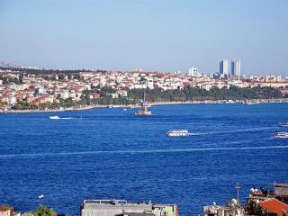 Taksim Flat With Bosphorus View, Estambul