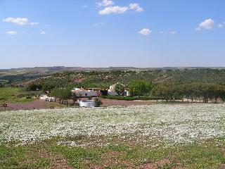 Bonita Casa de Campo en plena Ruta del Quijote