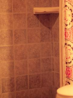 Master bath has walk in shower with tuscan tile and trim