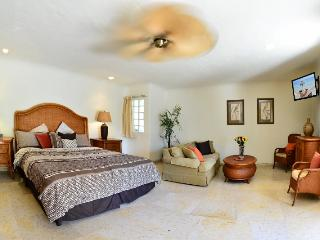 Beautiful, luxury studio type suite at Blue Palms!
