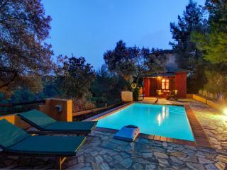 Pegasus: The pool area