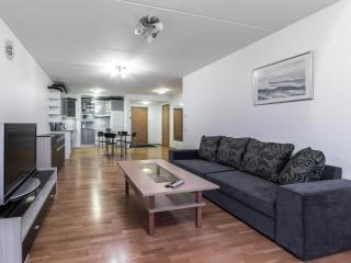 Standard 1 BDR Apartment – Roosikrantsi Street, Tallinn