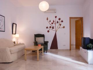 [24] Fantastic apartment next to the Bohemian area, Seville