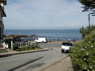 Street view from main house. Just steps to the ocean. Short walk to Cannery Row and the Aquarium.