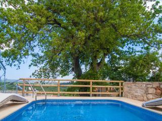 Villa Pomogna with jet stream pool, Chania