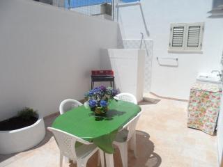 Villetta 100 m spiaggia, veranda con barbecue, box auto, 2 clima, 7/8 posti