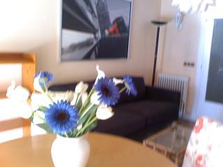 Confortable and cosy apartment Marina de Pasaia, Saint-Sébastien