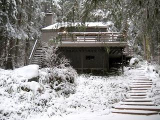 26SL Woodsy Cabin near Mt. Baker with a  Hot Tub, Glacier