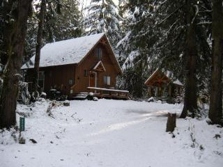Mt. Baker Lodging - Cabin #67 - A very private 2-story cabin with a private outdoor hot tub!, Maple Falls