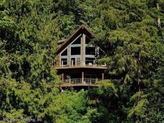 Silver Lake #7 - Unsurpassed lakefront views from this spectacular pet-friendly cabin!, Maple Falls