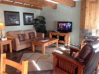 By Gondola Lionshead 2bd/2ba Low Rates Gold-Rated, Vail