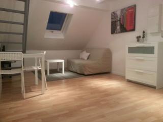 le lys: meublé avec mezzanine wifi compris, Straßburg