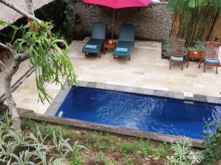 Gorgeous! Villa Teras Sungai 2 bdrm Ubud Center