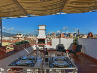 Pitti Terrace - Florence center near Palazo Pitti 1 bdr with panoramic terrace