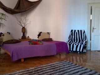 Super Central, Chic Apartment :), Cluj-Napoca