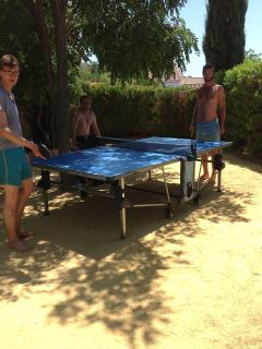 Table tennis on the boule court