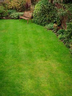 Parkside's back lawn.