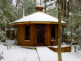 The cabin last winter, early dusting of snow.