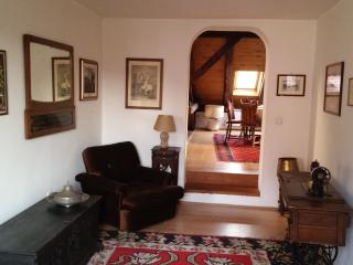 Cosy apartment in the very downtown, Sarajevo