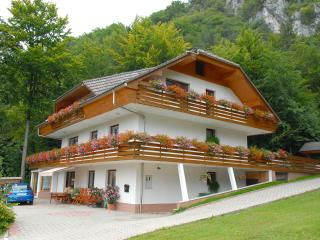 Superior Apartment With 3 Balconies, Bled