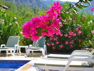 Holiday Villa Helena 5 in Göcek Terrace Life