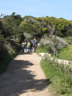 Beautiful walks up to the cliffs or to the next beach in approx. 30min