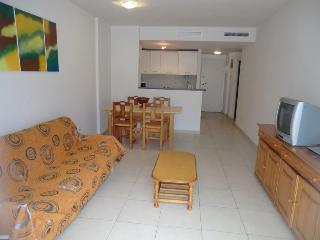 Living Room Area .