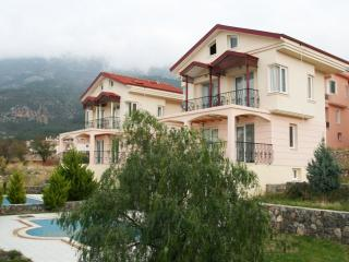 Brand New Ovacik Villas of Olu deniz, Private pool